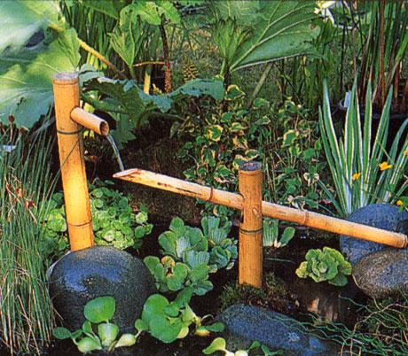 trois formes de jardin paysage japonais jardins aquatiques. Black Bedroom Furniture Sets. Home Design Ideas