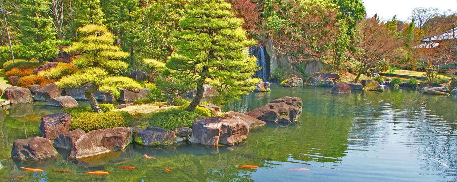 Sl1600x637 13 jardins aquatiques for Entretien jardin 13